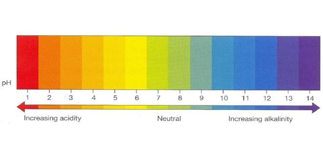 pH For Hydroponics
