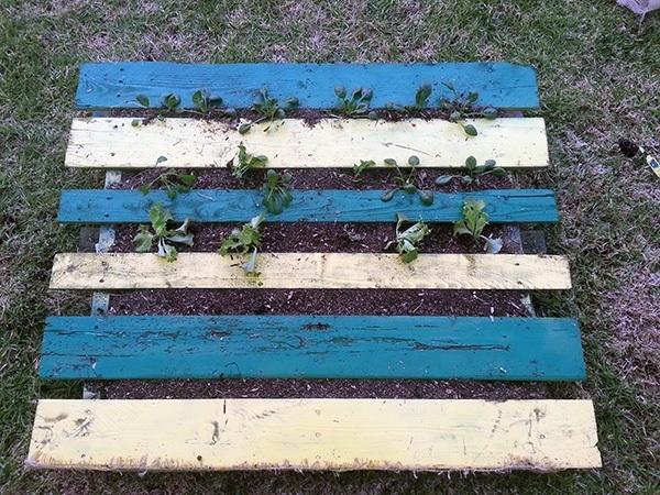 DIY Pallet Garden Planted