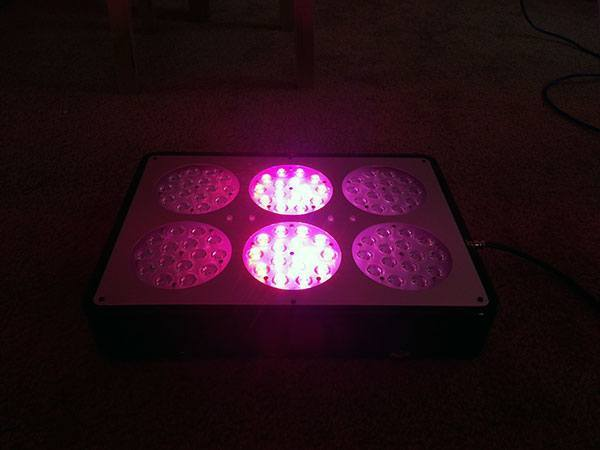 led-light-for-hydroponics