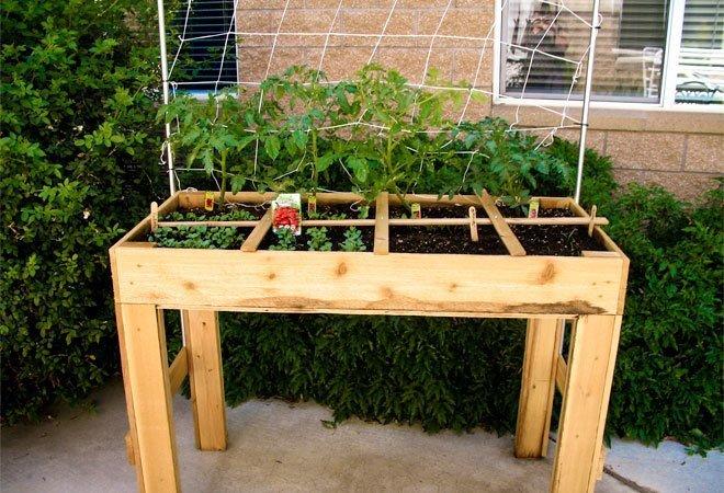 raised square foot garden