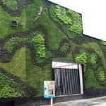 Green-Wall-1