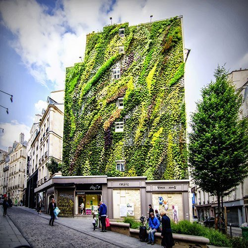 Green-Wall-3