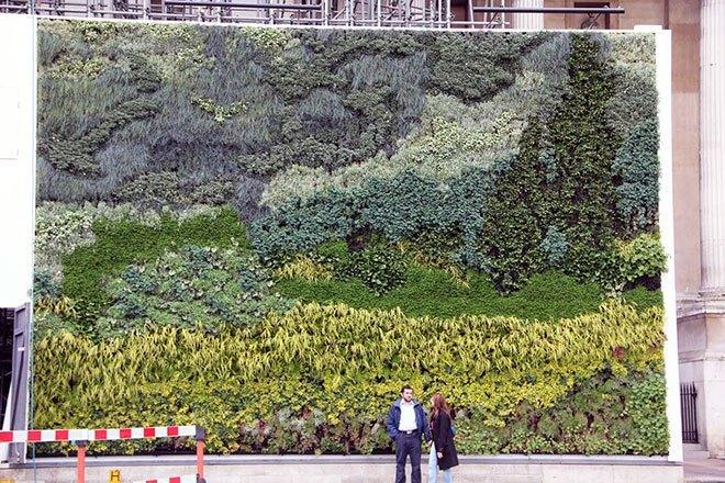 Green-Wall-7