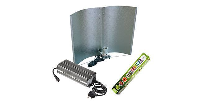 Hydroponic Lighting Overview