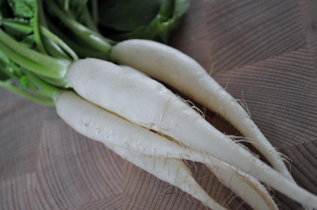 White Icicle radishes