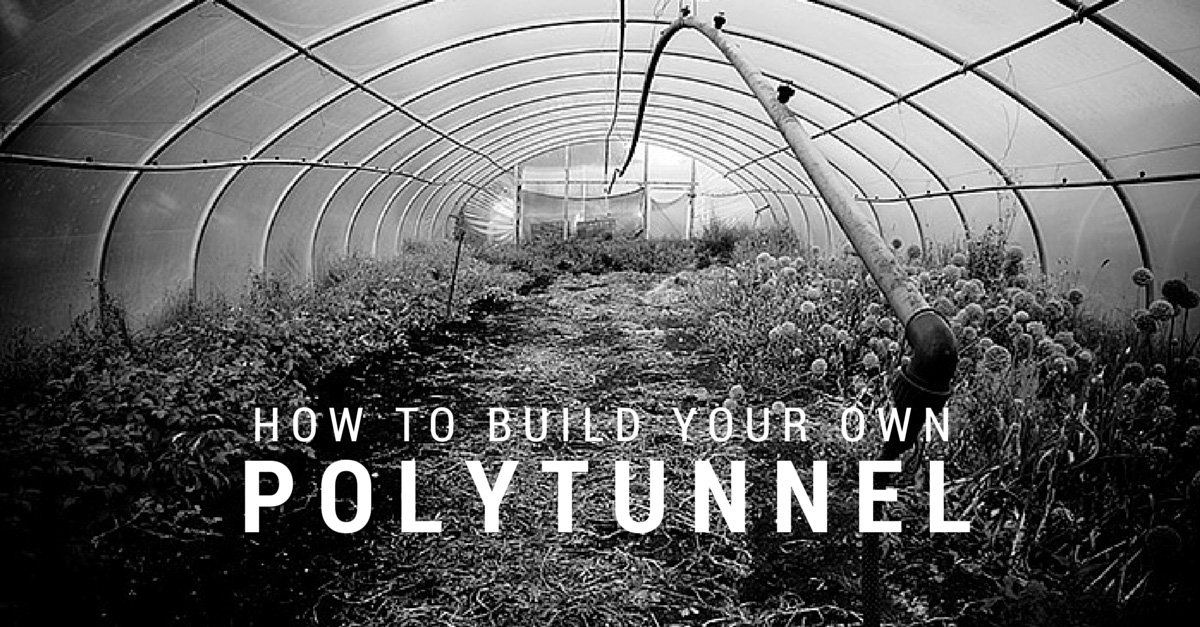 How To Build Your Own Polytunnel