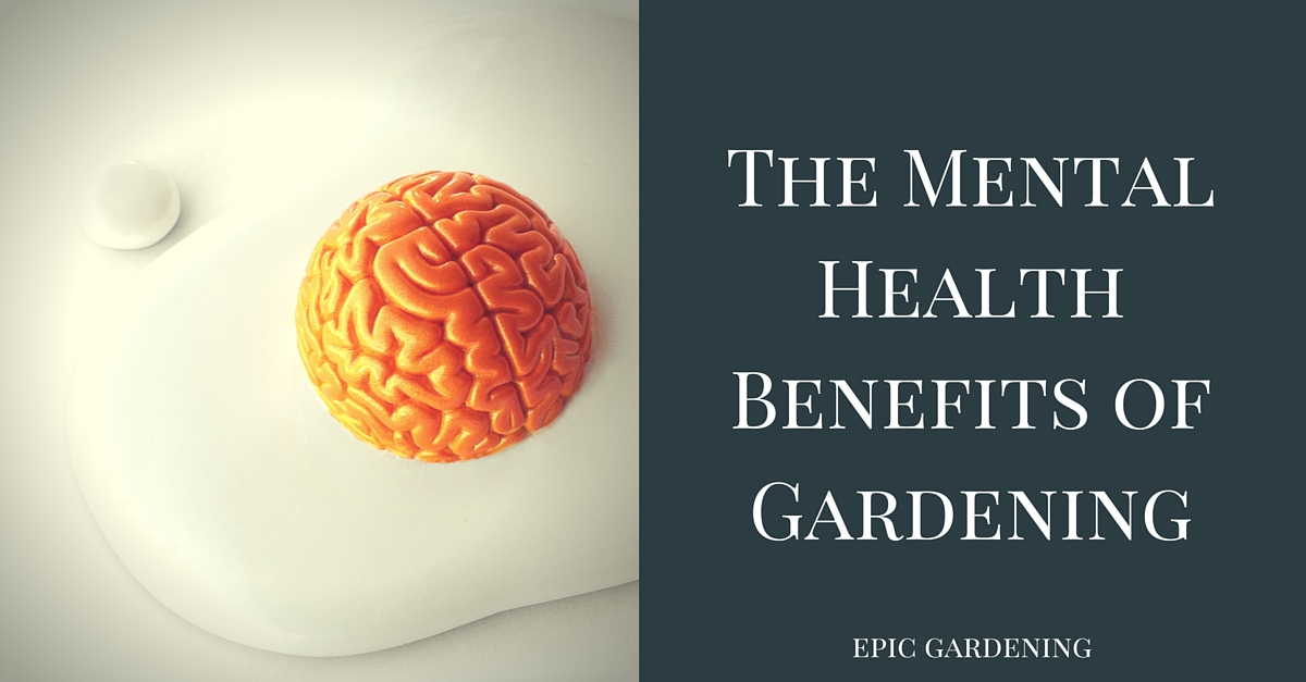 Good For The Body Good For The Soul The Mental Health Benefits Of Gardening