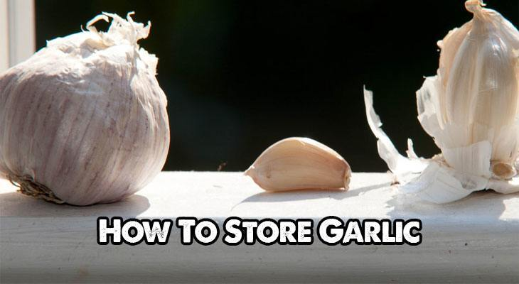 The Many Different Methods For Storing Garlic