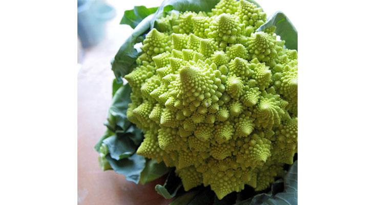 August Broccoli