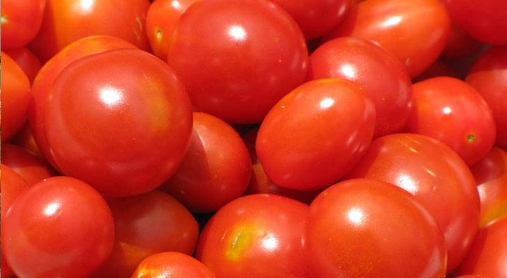 August Cherry Tomatoes