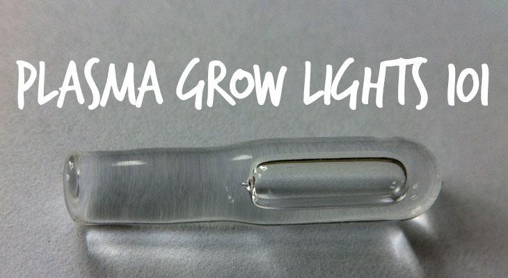 Plasma Grow Lights 101