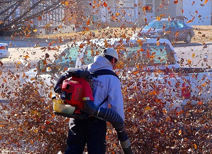 Landscaping companies mulch
