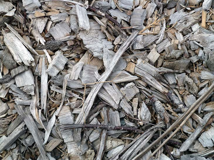 Wood chips from a tree, electric, or phone company mulch