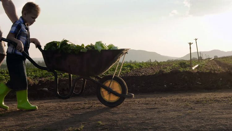 If you live in a hilly area, get a wheelbarrow that's easier to use!