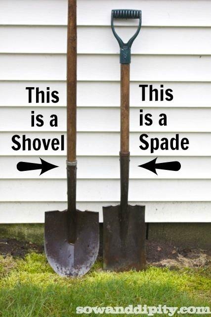 Shovel vs. Spade