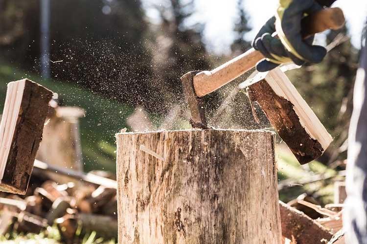 How to break down a fallen tree
