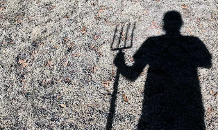 Digging Fork Decisions: Which One And What's Best For Your Wallet | Epic  Gardening