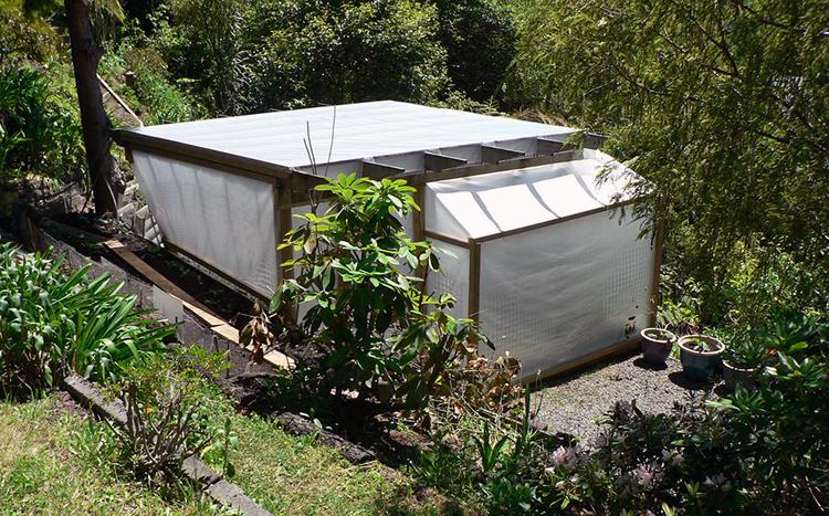 Polyethylene greenhouse