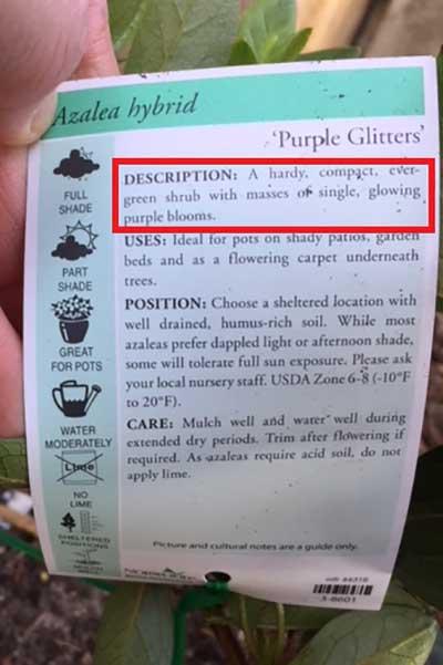 Plant label description