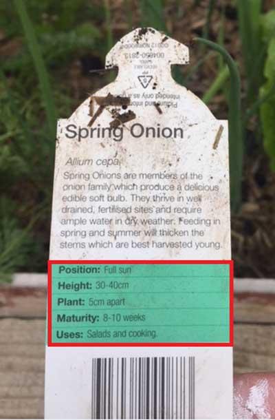 Plant label details
