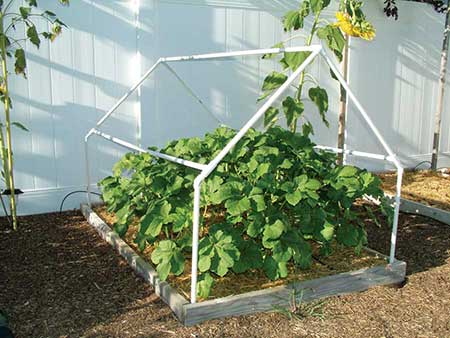 Another A-Frame PVC Greenhouse