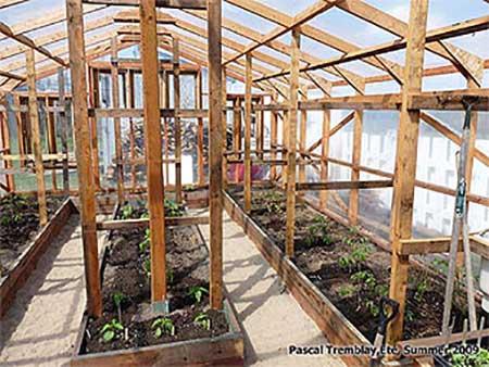 Canadian Super-Sturdy Wood Greenhouse
