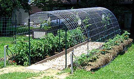 Cattle Panel Hoop Greenhouse