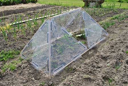 Modular Triangular Greenhouse