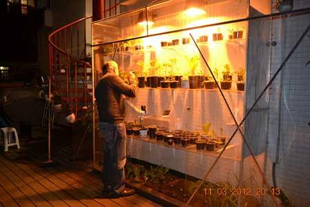 Slender Wall-Side Greenhouse