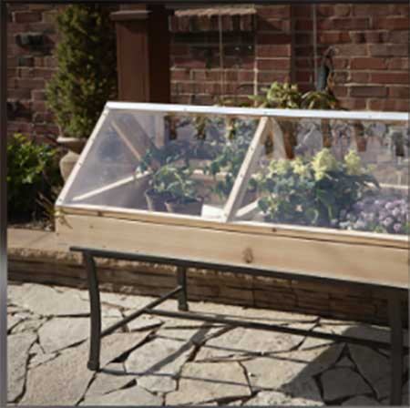 Tabletop Greenhouse or Cold Frame