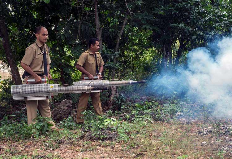 Using mosquito foggers