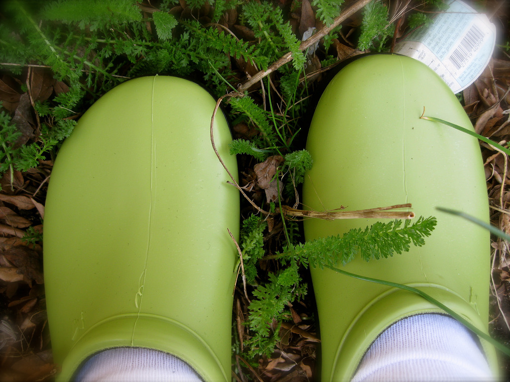 Gardening shoes on grass