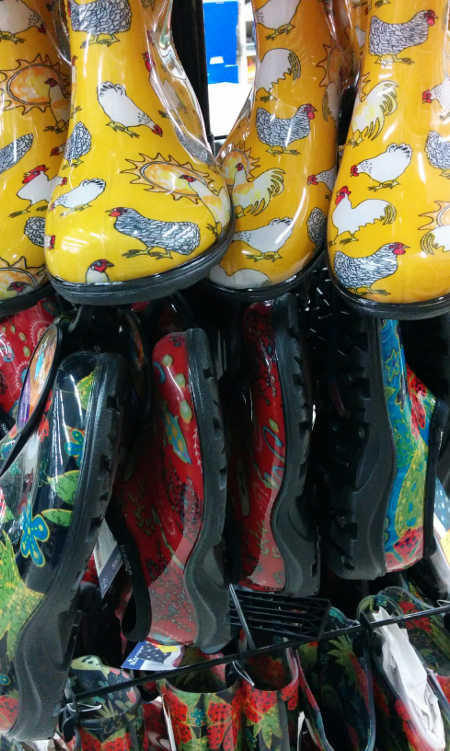 Wide variety of gardening shoes