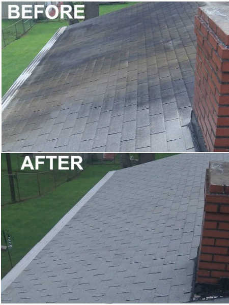Roof before and after power washing