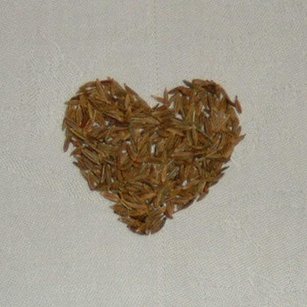 Seeds in heart shape