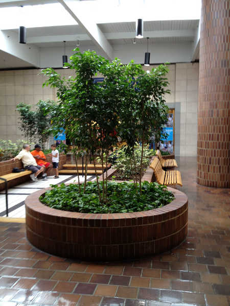 Interiorscaping in mall