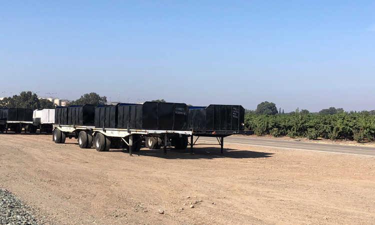 Large commercial grower preparing for harvest