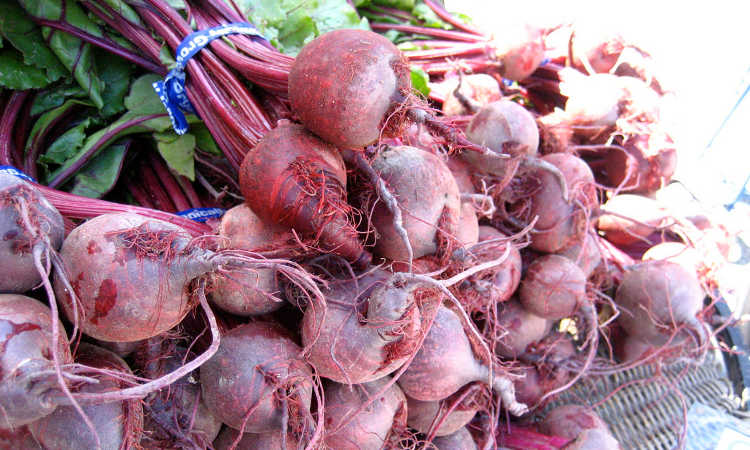 harvested beets