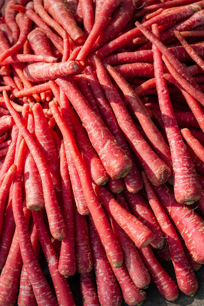 red carrots
