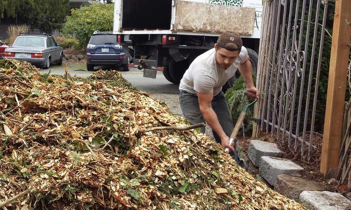 Arborist delivering wood chips