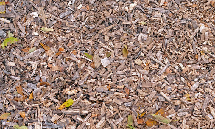Dry smaller wood chips