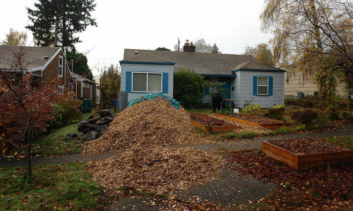 Wood chip pile by house
