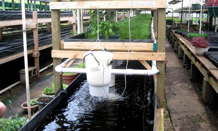 Outdoor Aquaponics System