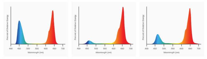 SolarSystem 550 Full Spectrum