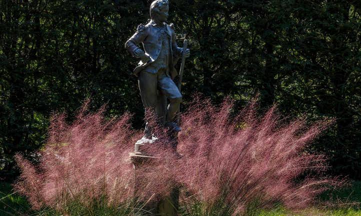 Statue with muhlenbergia capillaris