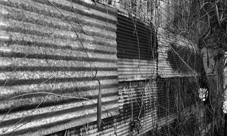 Galvanized steel as building siding