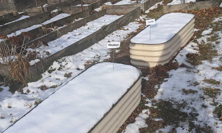 Galvanized steel raised beds in winter