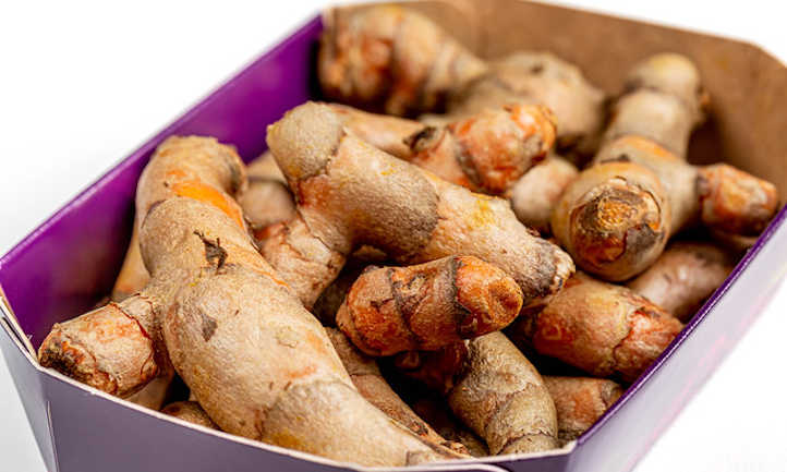 Fresh dried turmeric root