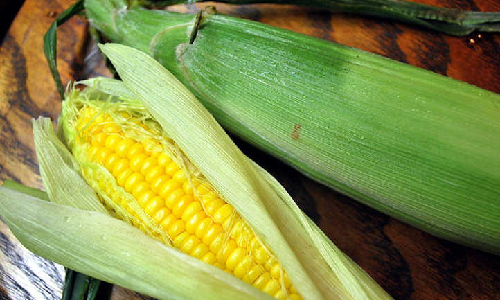 Cooked corn