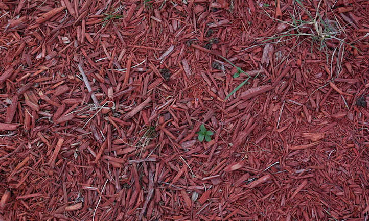 Dyed chip mulch